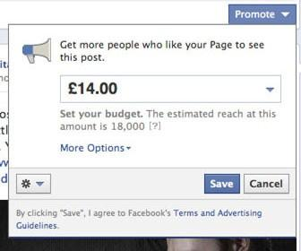 How to use Facebook's Promote button to make your business Page a success