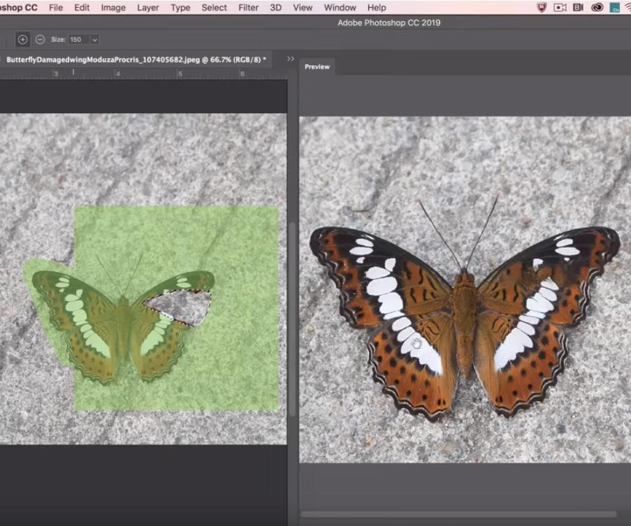 Adobe shows off new Content-Aware Fill tool coming to 'Photoshop CC 2019'