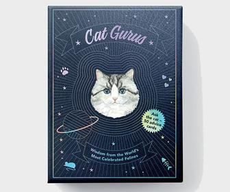 For National Cat Day, let Cat Gurus guide your life with these inspirational advice cards