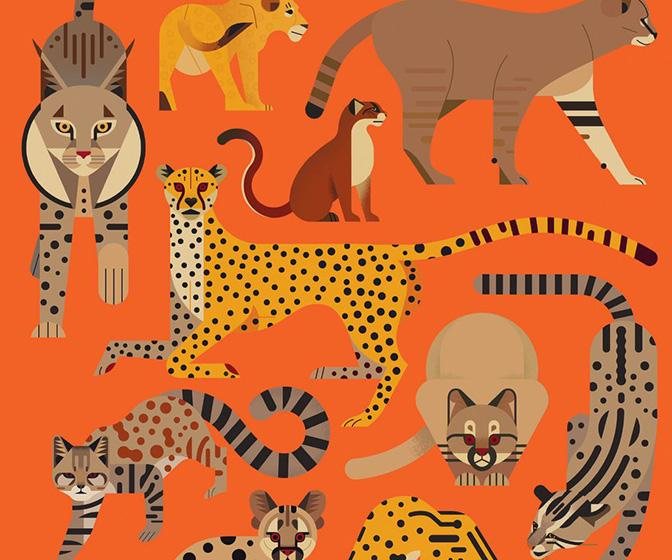 Illustrator Owen Davey on how he's created a successful series of animal-themed children's picture books