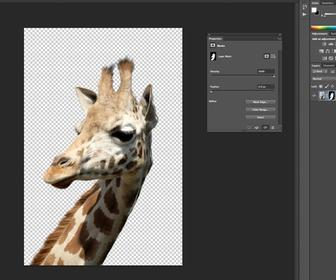 How to remove a background in Photoshop - Use Photoshop to remove the background of a photo