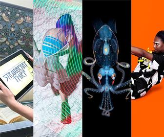 November 2014 visual trends: 5 things you must see this month